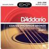 DAddario EXP17