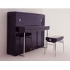 Sauter Peter Maly Edition Artes 122 Black Polished